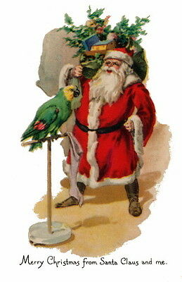 Antique Christmas Art~Santa Claus & Ornery Amazon Parrot~ NEW Large Note Cards ()