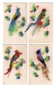 Bird Feather Art