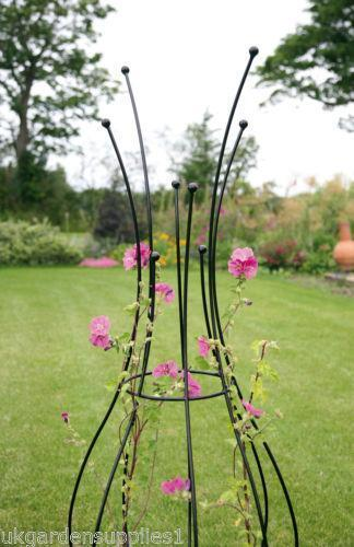 Plant Obelisk Garden Amp Patio Ebay