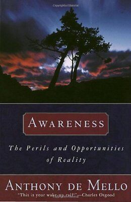 Awareness: The Perils and Opportunities of