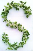 Wedding Flower Ivy Garland