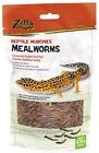 Lizard Supplies
