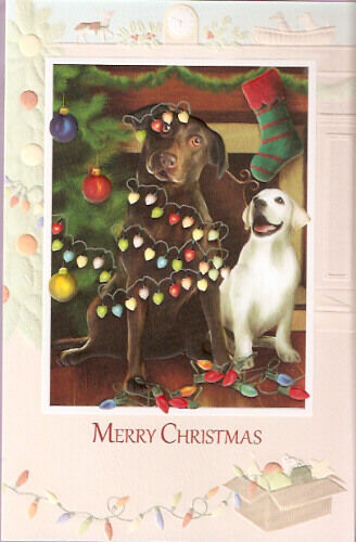 Labrador Retriever Lab Another Fine Mess Embossed Christmas Cards Box of 16*