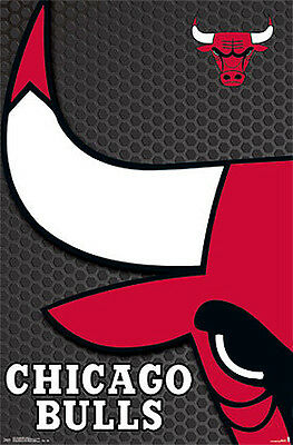 - CHICAGO BULLS NBA Basketball Official Team Logo Wall POSTER