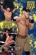 WWE Poster