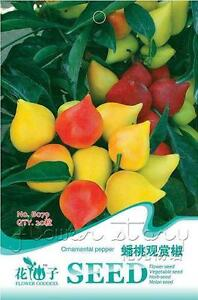 Best Selling in Pepper Seeds