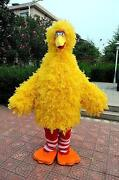 Big Bird Costume