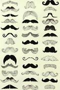 Moustache Fabric