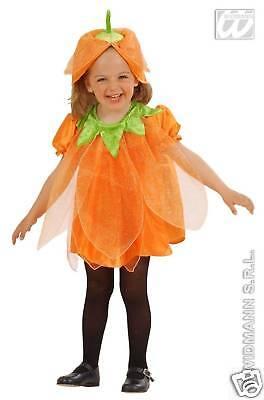 Kürbis von Halloween Mädchen Größe 1-2 Alter 2-3 Alter 4924Z (Mädchen Von Halloween)