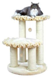 cat scratcher cat activity cat bed