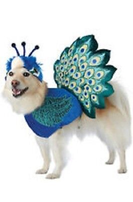 NEW Pretty as a Peacock dog Halloween COSTUME bird outfit pet cat hat L - A Peacock Halloween Costume