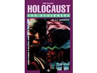 The Black Holocaust For Beginners Paperback by S.E. Anderson (Author), Vanessa Holley (Illustrator)
