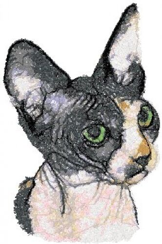 Embroidered Sweatshirt - Sphynx Cat AED16038 Sizes S - XXL