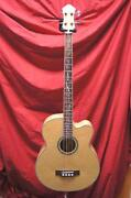 Michael Kelly Acoustic Bass Guitar