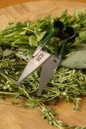 how to clean garden shears