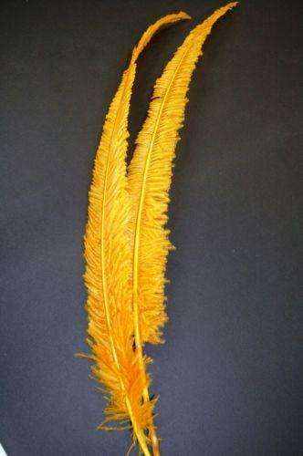 Gold Ostrich Feathers Ebay