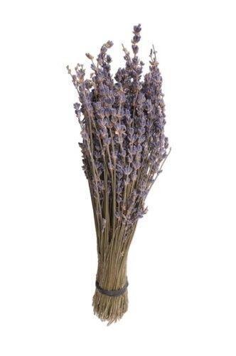 Lavender Bundles Home Amp Garden Ebay