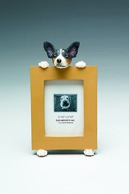 rat terrier  picture frame   15-92