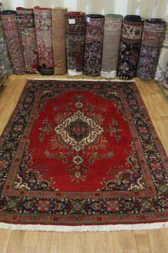Large Area Rugs 10x13 Ebay