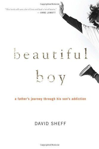 Beautiful Boy: A Fathers Journey Through His Sons Addiction By David Sheff