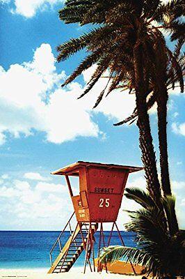 Lifeguard Hut   Tropical Beach Poster 24X36 Ocean Scenic Palm Trees 4888