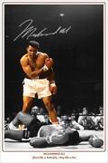 Muhammad Ali Signed
