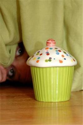 The Hidden Cupcake Birthday Gift Box -a Hide & Find Tradition Magnolia Lane NIB - Find A Birthday