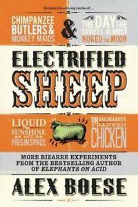 Electrified-Sheep-Glass