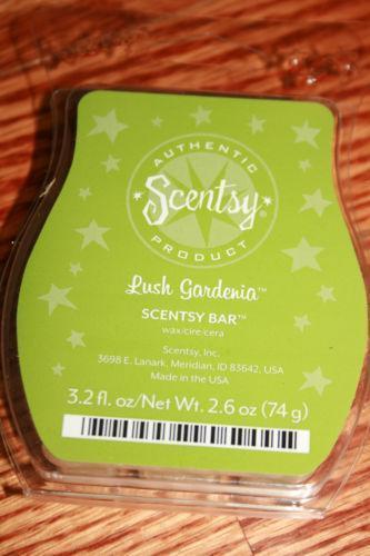 Scentsy Scent Bars Home Decor Ebay