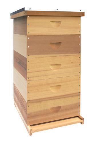 Langstroth Bee Hive: Beekeeping | eBay