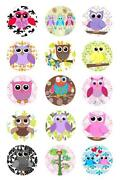 Owl Bottle Cap Images