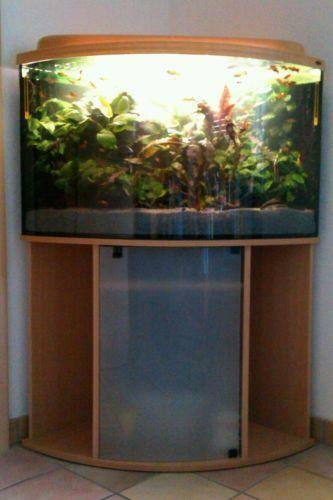 panorama aquarium aquarien ebay. Black Bedroom Furniture Sets. Home Design Ideas