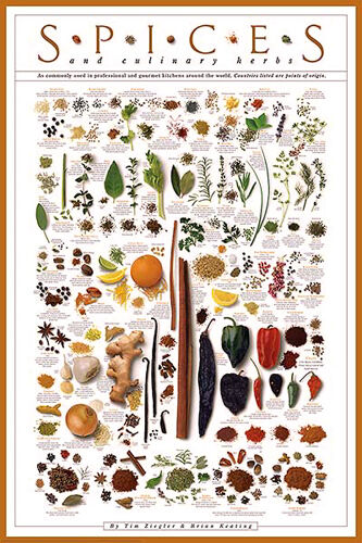SPICES AND CULINARY HERBS Cooking Kitchen Food WALL POSTER by Ziegler & Keating