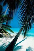 Poster Karibik