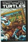 Teenage Mutant Ninja Turtles Comic 3