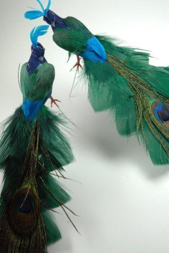 Peacock Feather Centerpieces Ebay