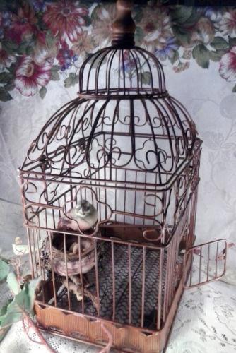 Wire Bird Cage Ebay