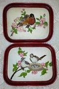 Completed Cross Stitch Birds