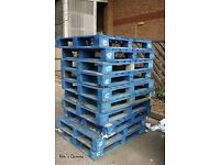 3 X FREE blue pallets collection only