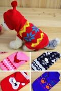 Small Boy Dog Clothes