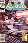 Punisher Mini Series