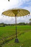 Bali Schirm