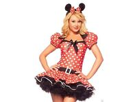 disney adult minie mouse costume like new £15 ono