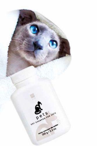 Bed Head Dog Dry Shampoo