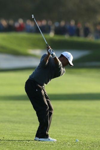 Tiger Woods Poster Ebay