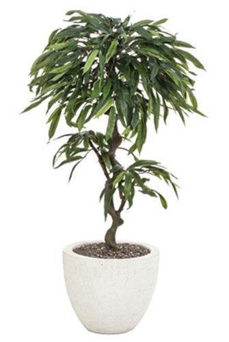 kugelbaum g nstig online kaufen bei ebay. Black Bedroom Furniture Sets. Home Design Ideas