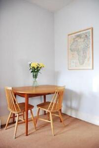 Merveilleux Vintage Retro Dining Chairs