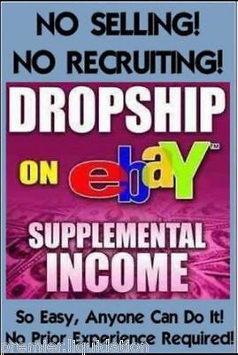 Make Money W Your Own Ebay Amazon Copy   Paste Dropshipping Online Business