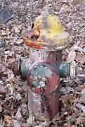 Used Fire Hydrants