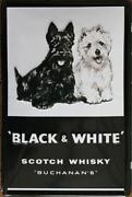 Blechschild Whisky